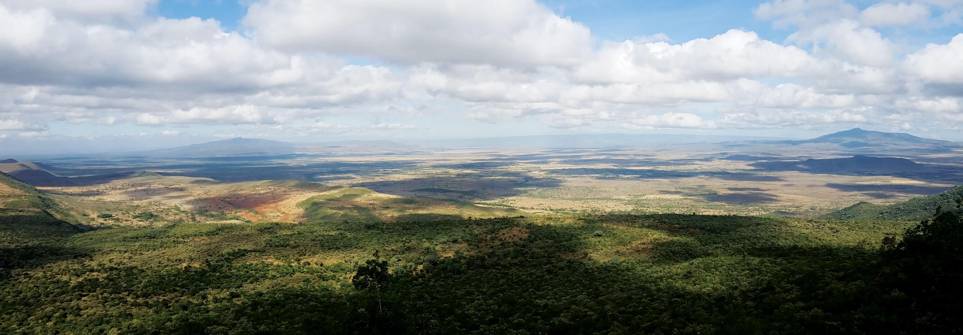 Photo of a landscape